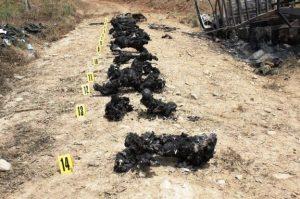 Masacre de las FARC en Puerto Rico, Caqueta. 14 policias incinerados, algunos vivos. ¿Crímenes como estos quedarán impunes..?