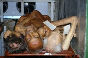 Muertos apilados como animales. Sobre sus miserias nuestro Nobel gozó lo que a ellos les fue negado