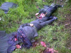 Coronel Ruiz y patrullero Marmolejo, asesinados a sangre fría por los bandidos de las farc