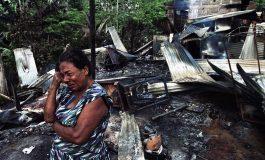 COLOMBIA: ¿LA OFENSIVA FINAL DE LAS FARC?