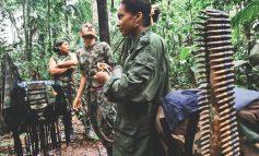 CAOS EN EL AGRUPAMIENTO DE LAS FARC